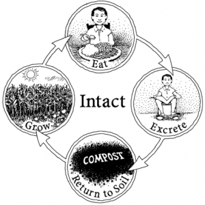 Intact_Nutrient_Cycle_01